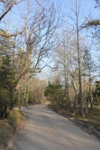 Quaker Bridge Road.