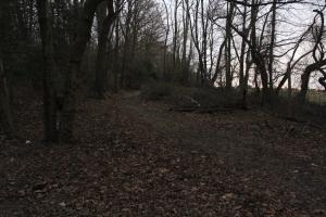 Stafford Trail.