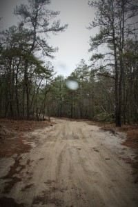 Turn right and walk down the dirt road.