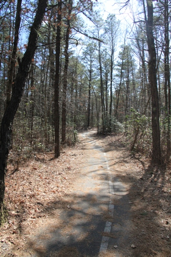 On One Bikes >> Blueberry Hill Trail(s) - Gibbsboro, NJ - South Jersey Trails