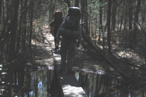 Swamp bridge.