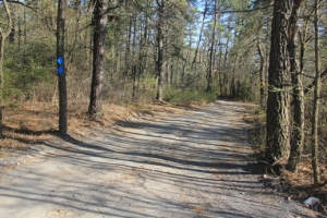 Blue trail to the right.