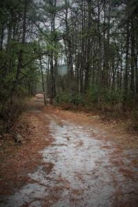 White Trail looks inviting.