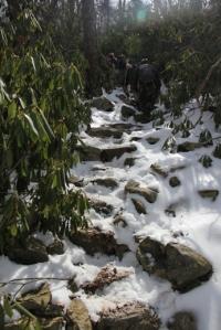 Trail gets very steep again.