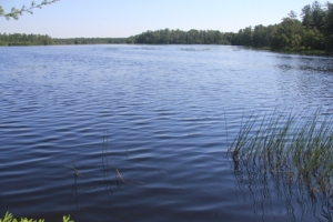 Lovely Harrisville Pond.