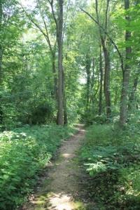 Lovely trail.