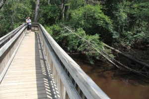 Tom's Pond Trail bridge over the Mullica River, as seen on a sunny day when you are over, and not on, the river.