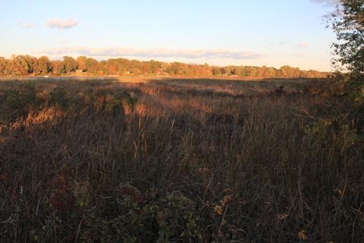 Burlington County | South Jersey Trails | Page 8