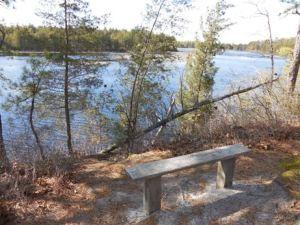 Nice bench.