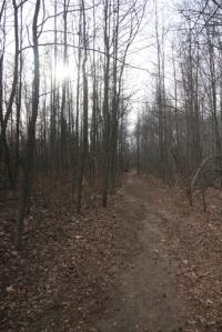 Also blue trail.