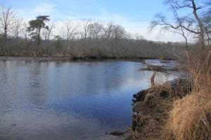 Rancocas Creek... so we meet again...