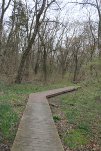 Didn't I tell you they did a nice job with this trail?