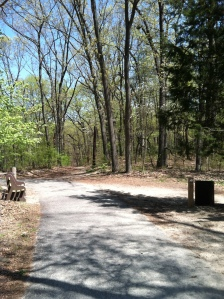 Trailhead toward the dog run.