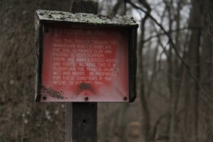 The warning.