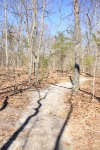 Blue Trail. Wow, my camera settings were off.
