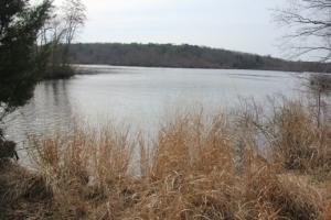 Maurice River.