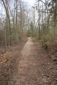 Jenkins Landing Trail proper.