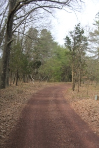 Familiar looking road.