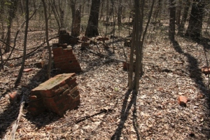 Old bricks, or some jerk dumping them?