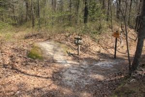 Split in the trail.  Stay left.
