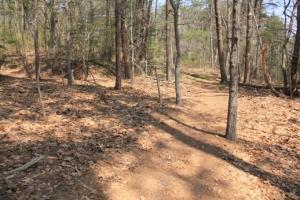 Lovely, lovely trail.
