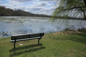 Prime picnicking area.
