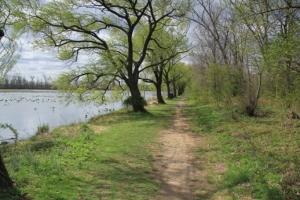 Trail is nice too.