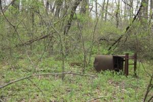 Dumped trash or old artifact?