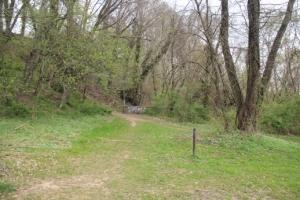 Toward Watson's Woods.