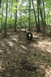 Neither one of us used the tire swing.
