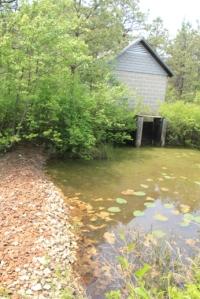 Cranberry bog building.