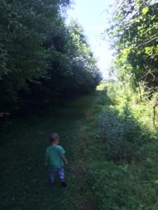 Down the trail.