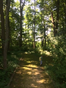 In the woods. The Pres is making the right onto the Pond Trail.