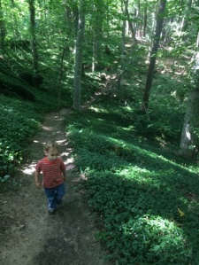 This is a really nice trail. I think I said that already.