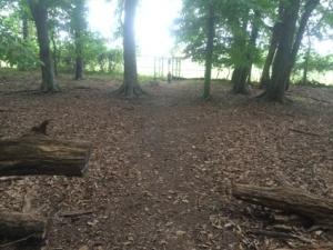 Trail toward the middle school fields.