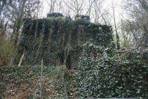 Camouflaged ruins.