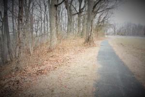 The trail follows along past the dog run.