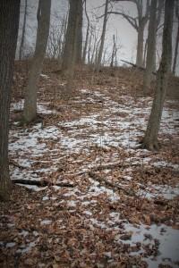 Do NOT follow side trails.