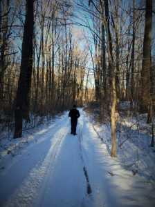 The trail narrows from a road to a true trail. The snow made it magical. That's when we lost our second companion.