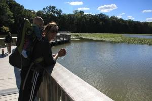 Floating bridges put babies to sleep.