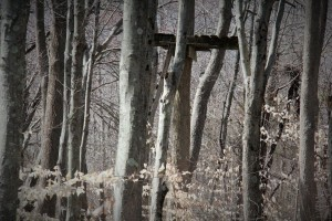 Old hunting stand.