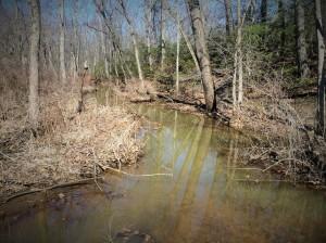 Nice creek.