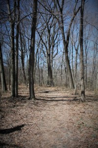 Beginning of trail.