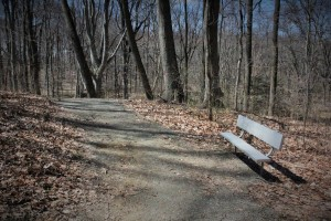 Definitely a trail.