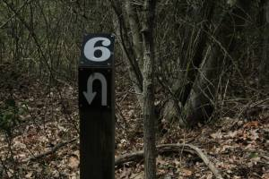 My favorite trail marker ever.