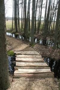 I want to build a bridge like this in my backyard.  Seriously.