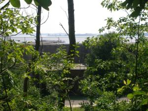 Interesting views toward the river.