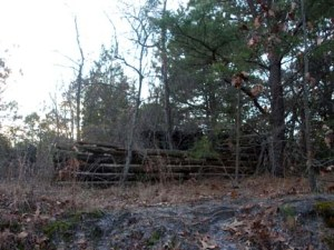 Remains of the old cabin complex.