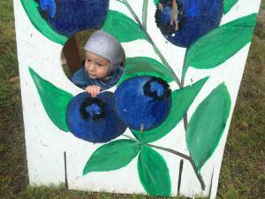 blueberryfestival07