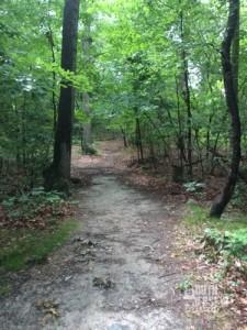 Still, I do love a dirt trail.